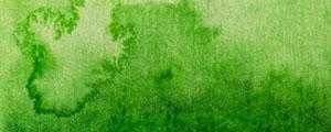 Akvarelová barva Renesans 15ml – 39 Zeleň permanentní