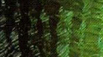 Olejová barva Phoenix 120ml – Zeleň Hooker světlá