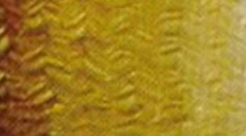 Olejová barva Phoenix 120ml – Sienna
