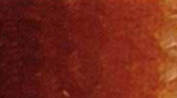 Olejová barva Phoenix 120ml – Sienna pálená