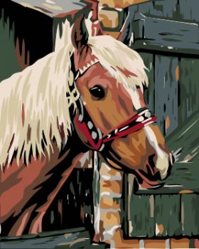 Malování podle čísel – kůň ve stáji 40x50cm