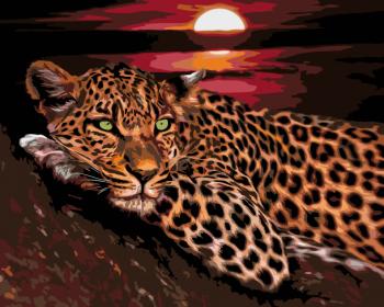 Malování podle čísel – levhart 40x50cm