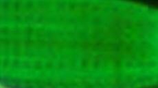 Akrylová barva Phoenix 75ml – 538 Zeleň permanentní