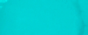 Tempera Renesans 100ml – Zeleň smaragdová 13